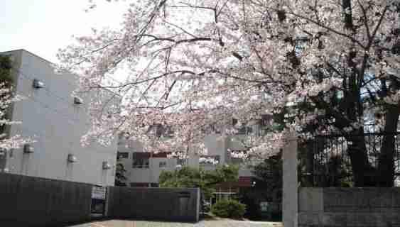 ミネット東栄 周辺画像8
