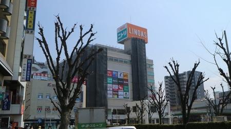 貸店舗・事務所 八尾市 桜ヶ丘1丁目 コーエイパレス 周辺画像4