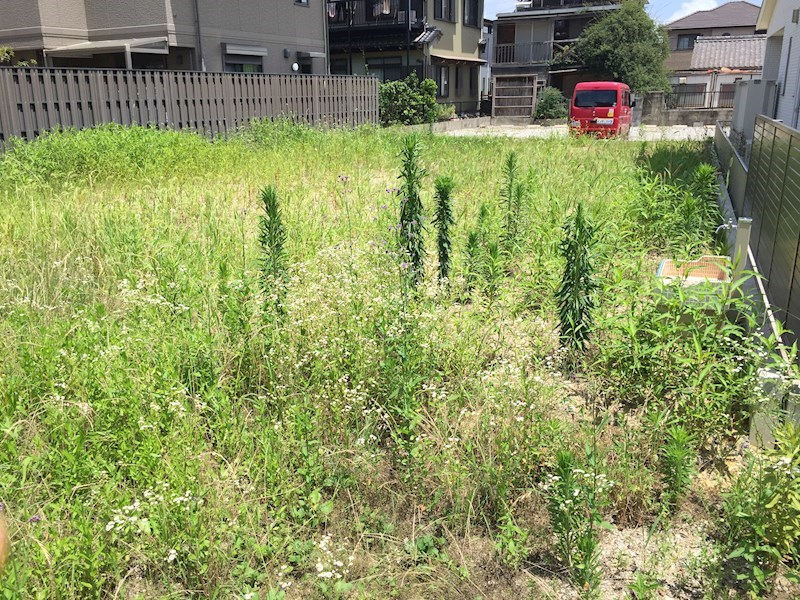 鈴鹿市神戸5丁目 土地 外観写真