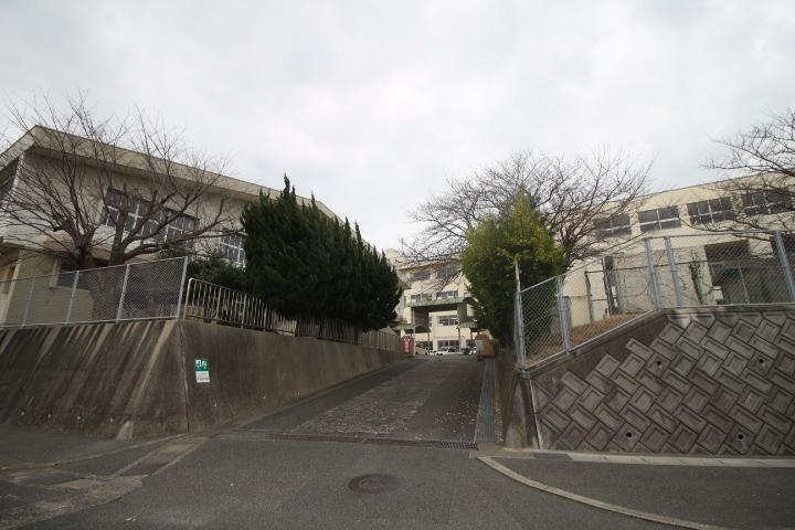 川中本町 周辺画像4