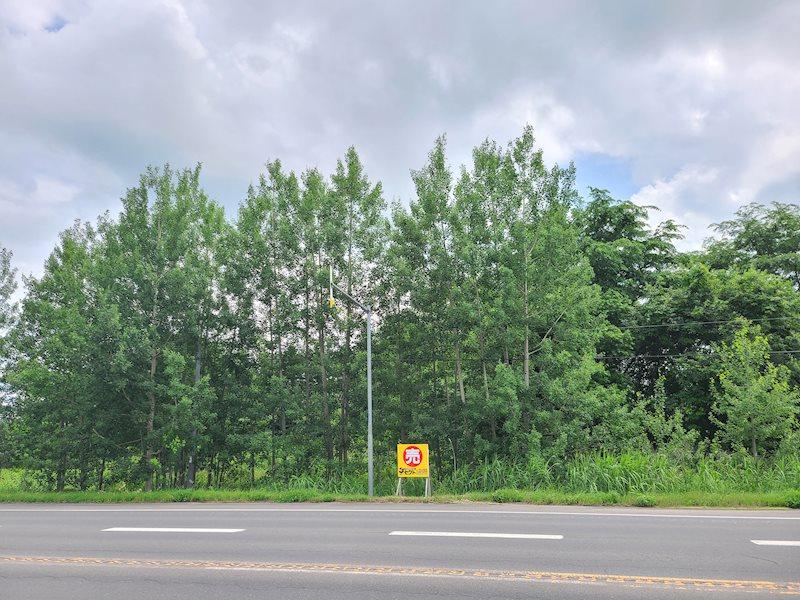豊田864番 土地 現地写真