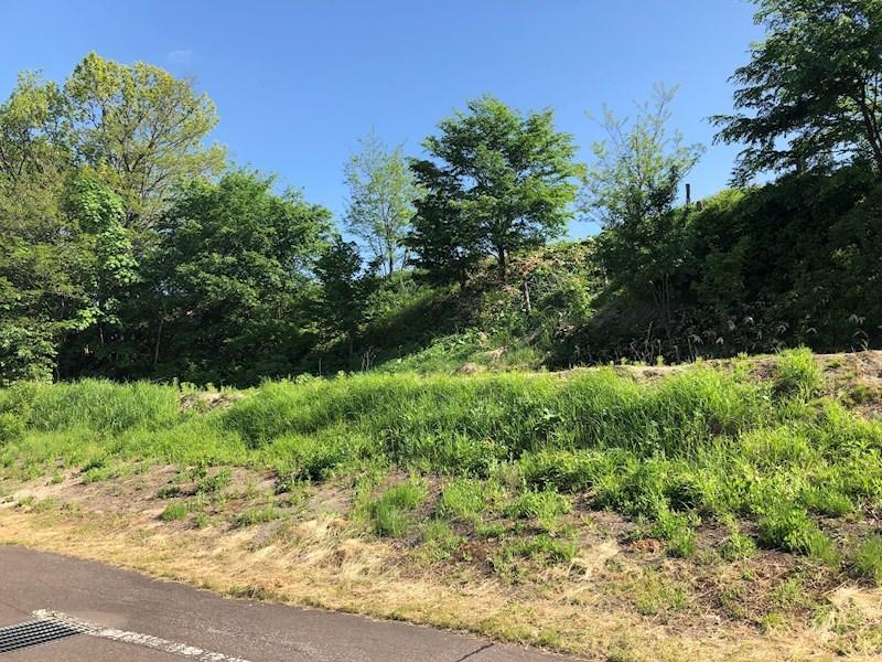 美幌町字稲美52番50 土地 現地写真