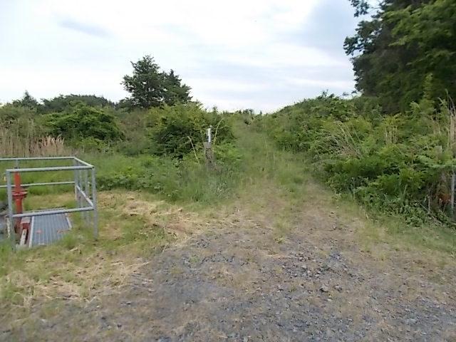 高松第29地割 山林 外観写真