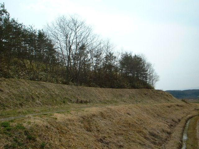 高松第12地割 山林 その他