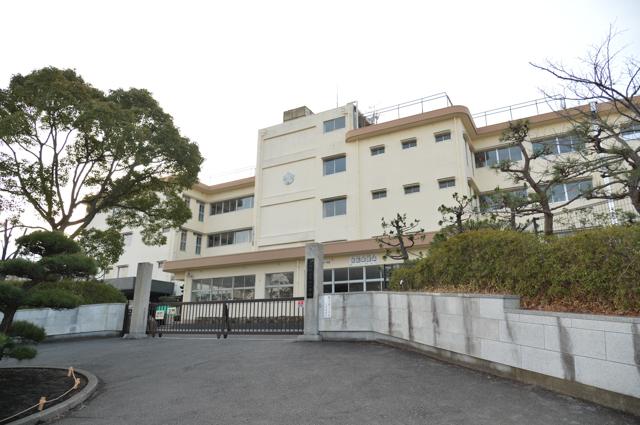 平塚市撫子原 新築戸建 全2棟 1号棟 周辺画像5