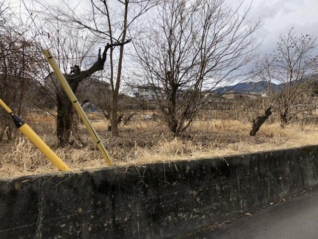 飯田市鼎上山土地 外観写真