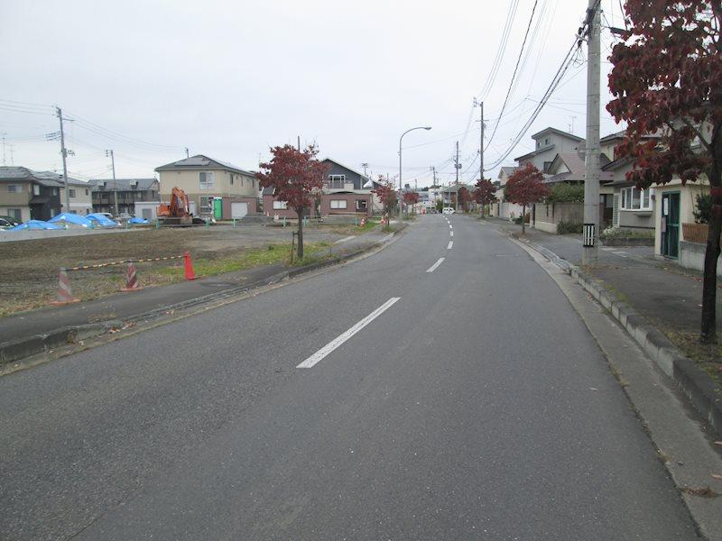 前面道路(歩道有)