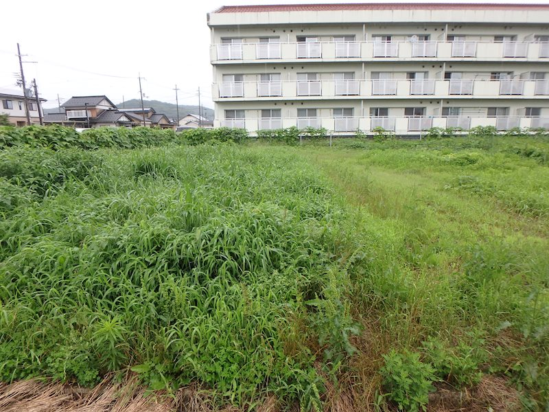 豊岡市日高町鶴岡の土地 外観写真
